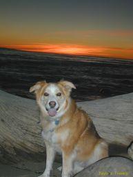 Tayla sunset