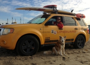 Deputy Dog partners up with Lifeguard Ken to secure the Malibu beaches