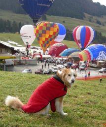 Tayla ballon fest switzerland
