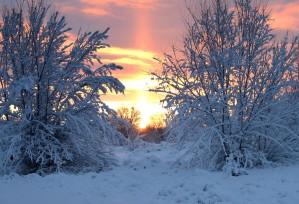 """Snow blankets Lakewood"""