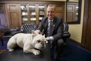 Lily, 15 pound French Bulldog and Rep. Jeff Denham