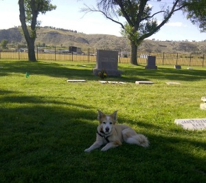 Tayla at cemetary 3